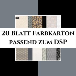 20 Blatt Farbkarton passend zum DSP Einfach Elegant